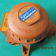Gas Detector CL2 0-100ppm
